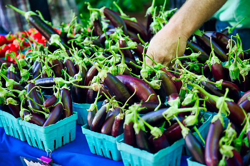 basket of Asian or Japanese eggplant at the farmer's market